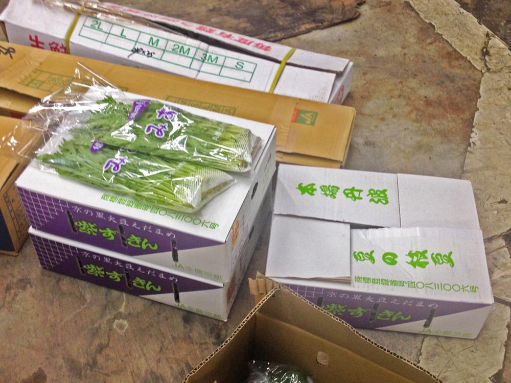 140917紫ずきんin市場
