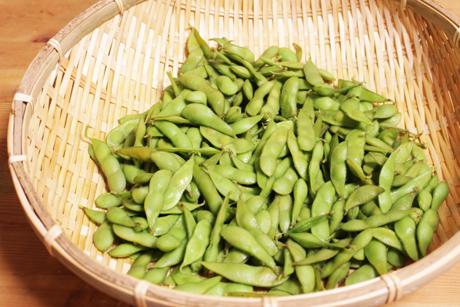 八尾、枝豆、なにわの料理教室 健彩青果、大畑ちつる
